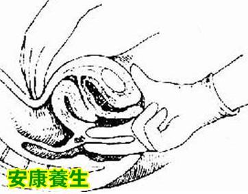 素描核桃的画法步骤图