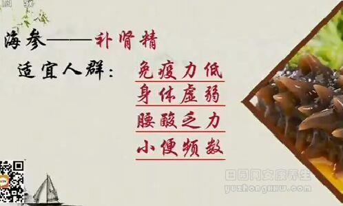 海参不能吃的部位图解